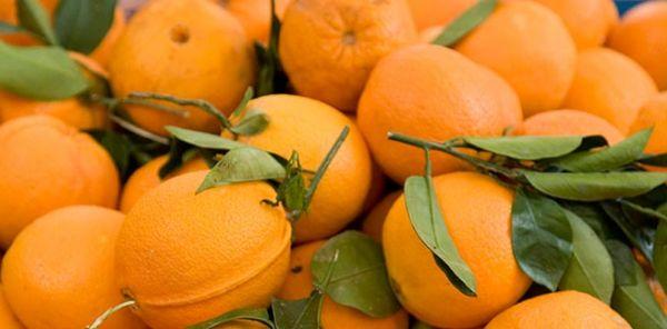 Velg økologiske appelsiner